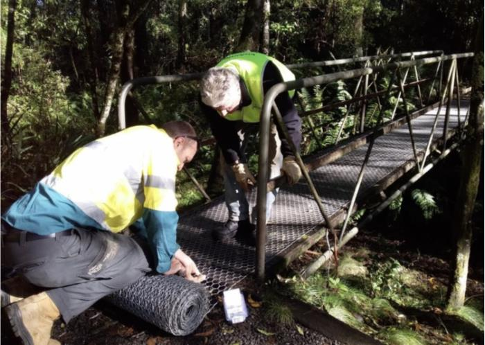 Bridge works in action