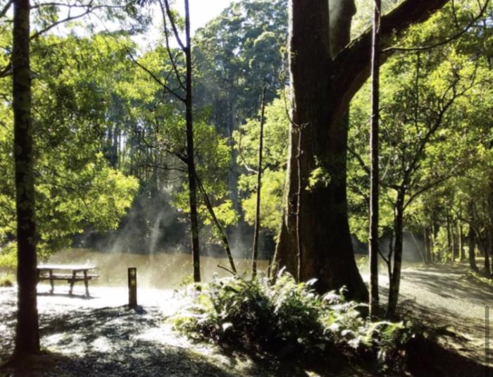 Steam rising at Sanatorium Lake